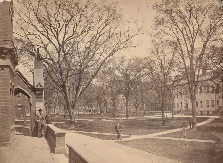 Harvard Yard, circa 1892.