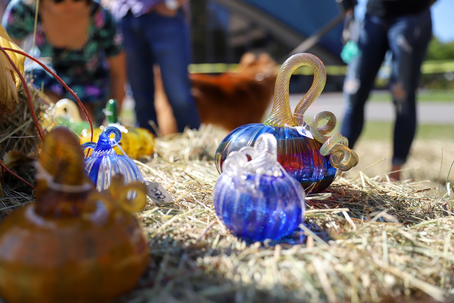 """Production of the hand-blown glass pumpkins occurs consistently throughout the year in order to produce 2,000 pumpkins for the annual September """"pumpkin patch""""."""