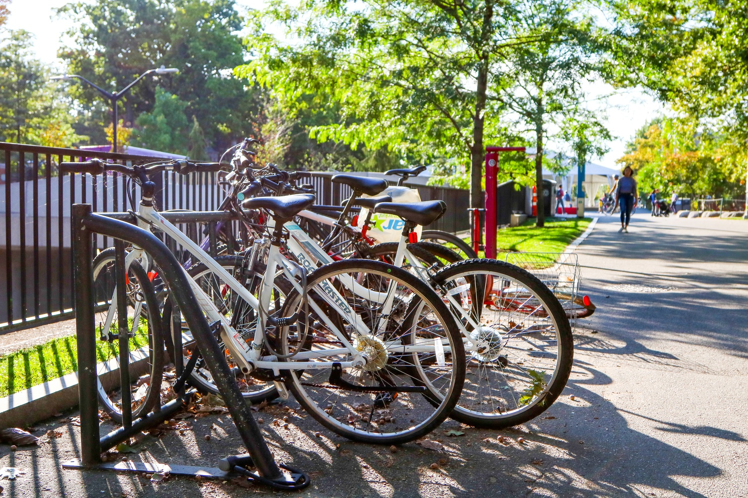 The Undergraduate Council is expanding its bike subsidy program to all undergraduates, regardless of their house affiliation.