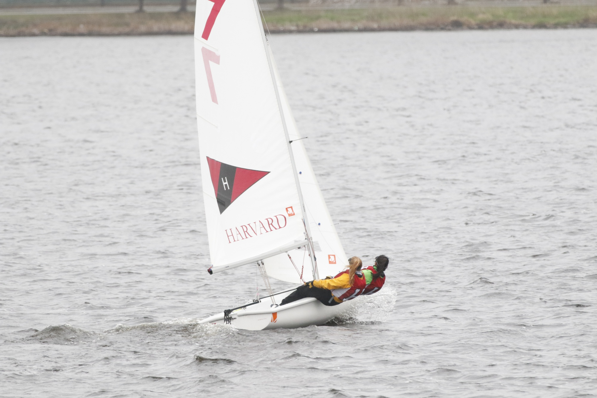 The sailing team competed in three regattas over the weekend: the Women's Showcase, Danmark Trophy, and the Lark Invitational.