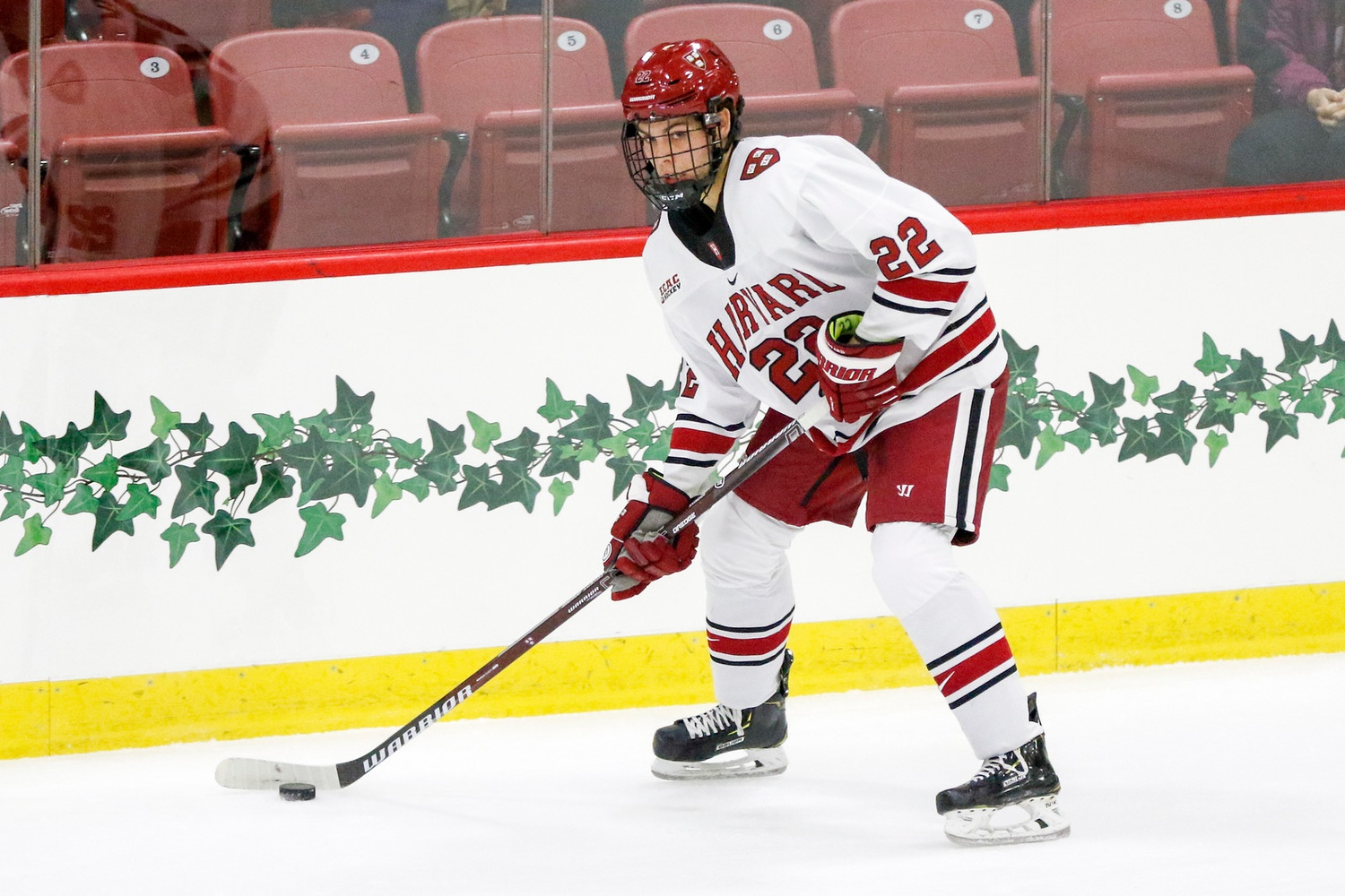 Freshman blue-liner Ryan Siedem has been tasked with a top-four role to open the Crimson's season.