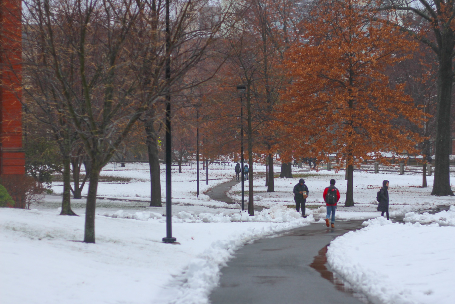 The campus received a substantial amount of snow to mark the advent of meteorological winter.