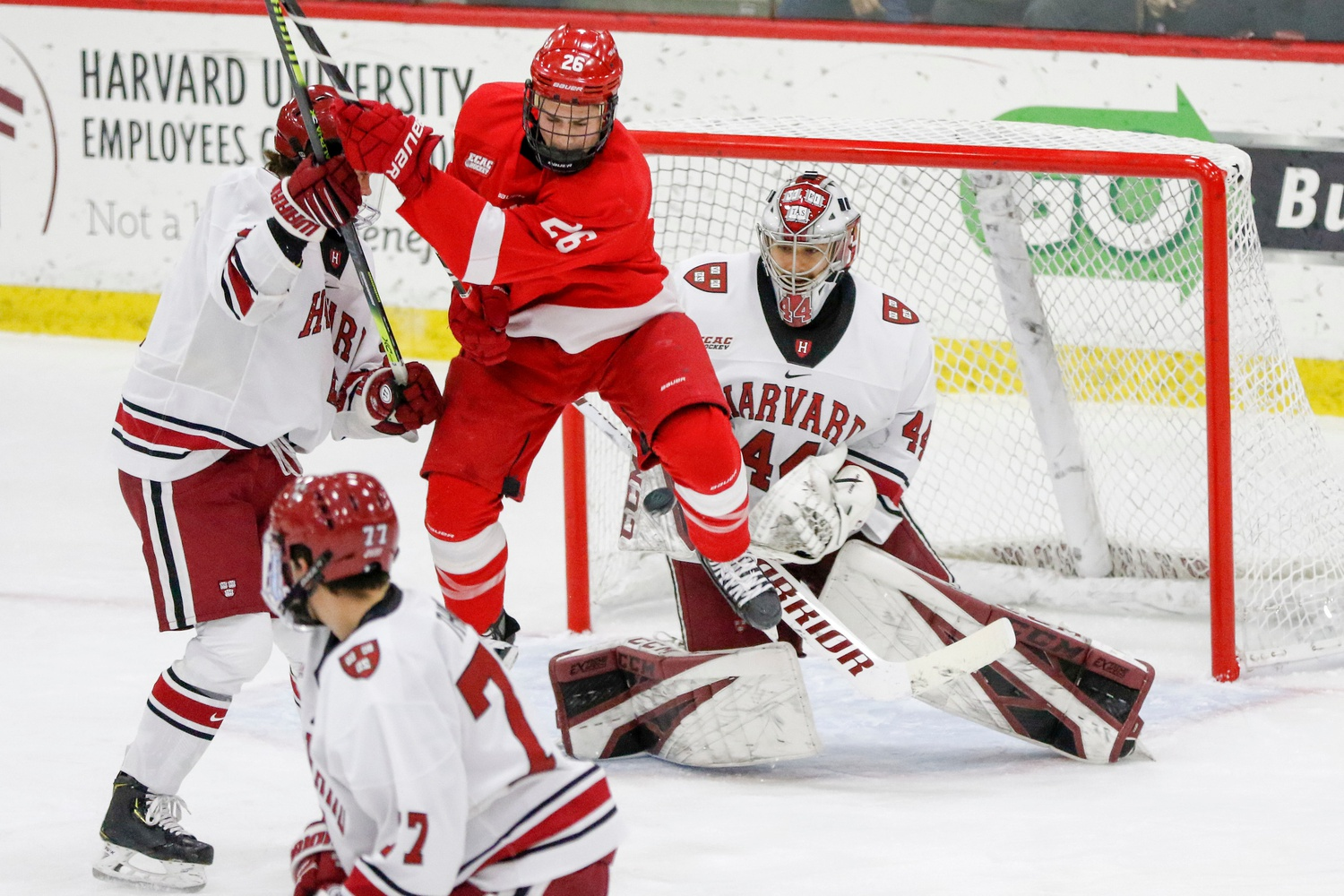 The Cornell forwards made it difficult for freshman goaltender Mitchell Gibson all night. To Gibson's credit, he hung in and gave his team a chance to win, but the play of the skaters in front of him failed to muster enough force.