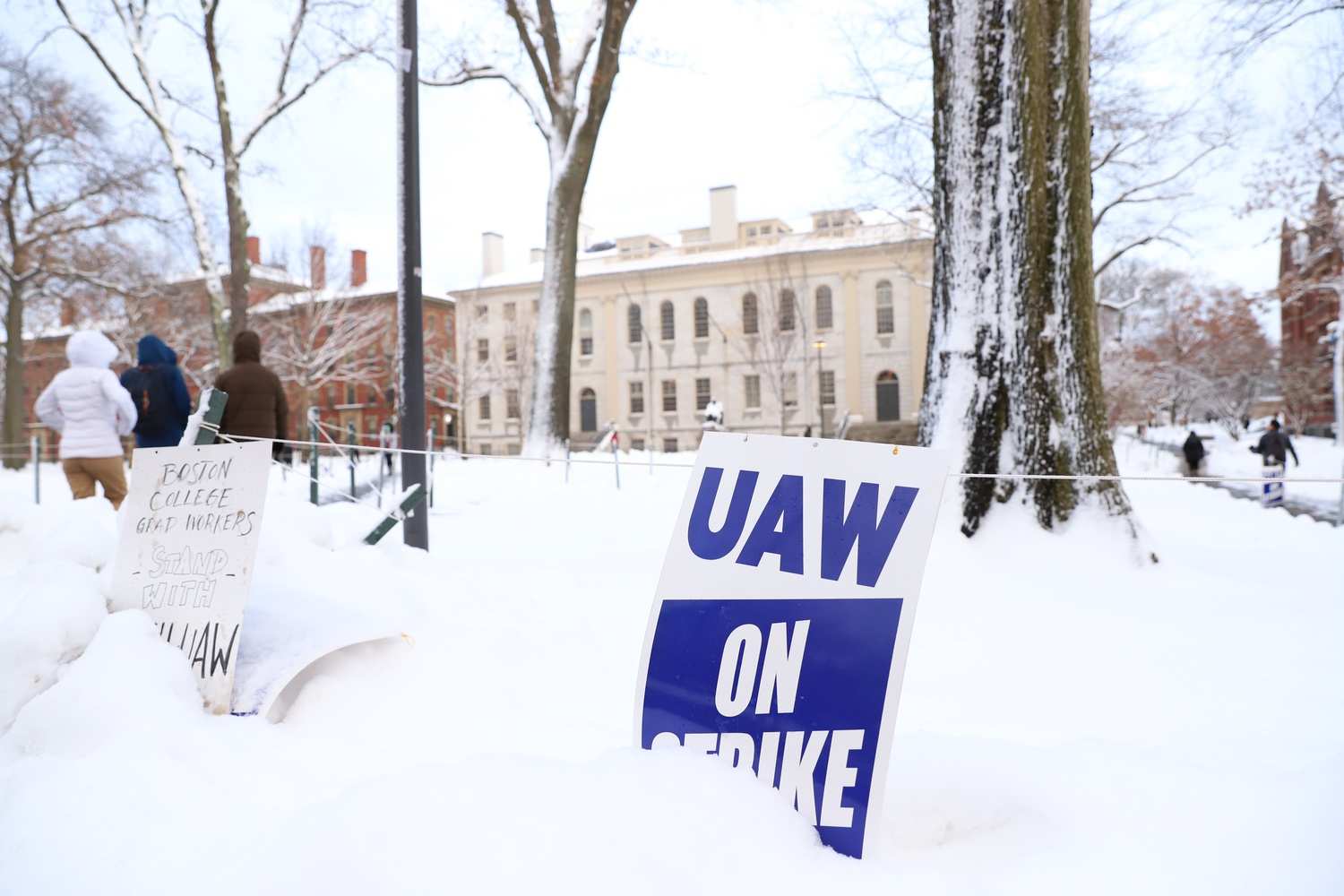 A UAW sign is left in the snow in Harvard Yard on the first day of the strike.
