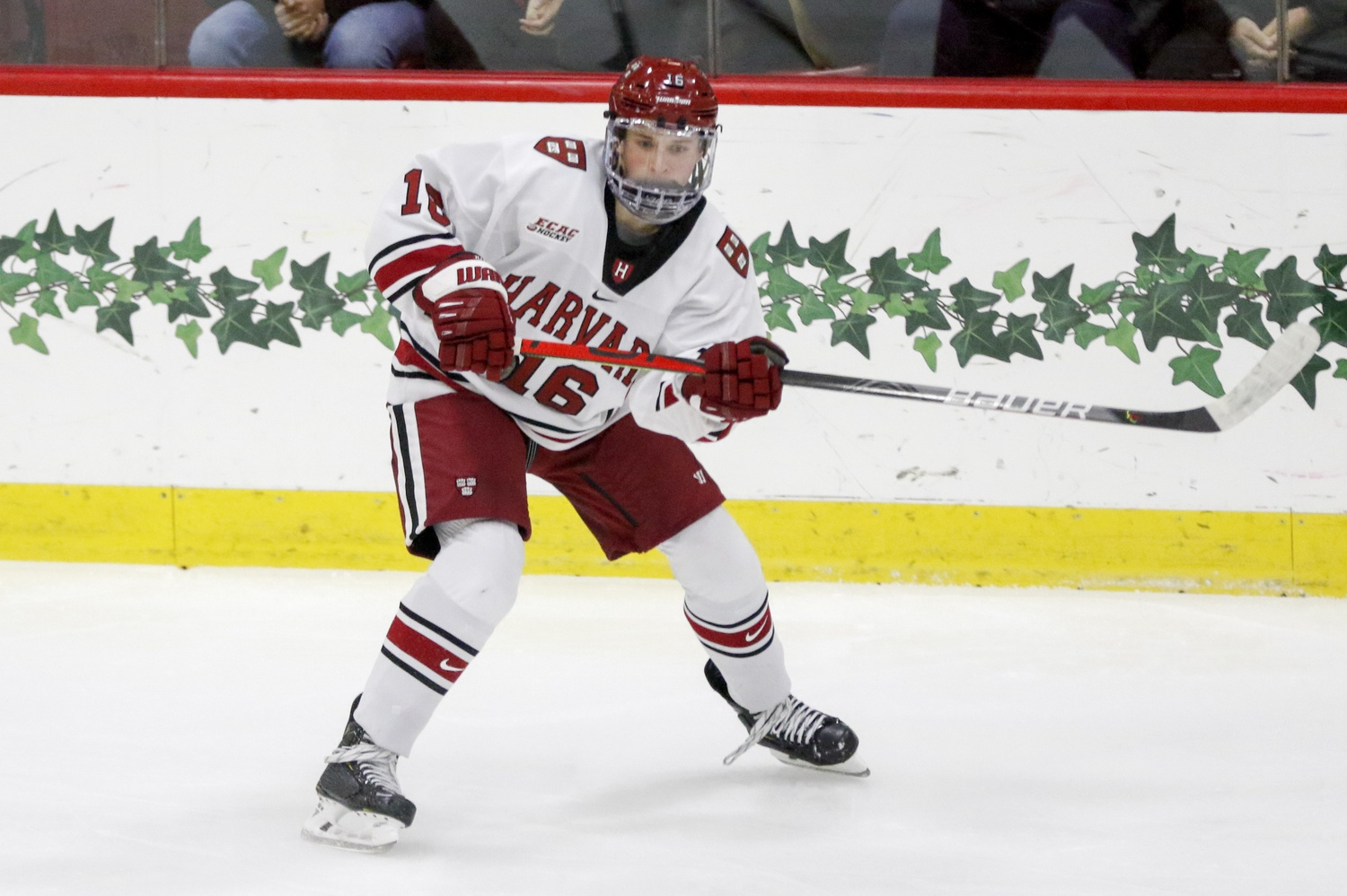 Rookie forward Nick Abruzzese leads all freshmen in the country in points per game (1.24).