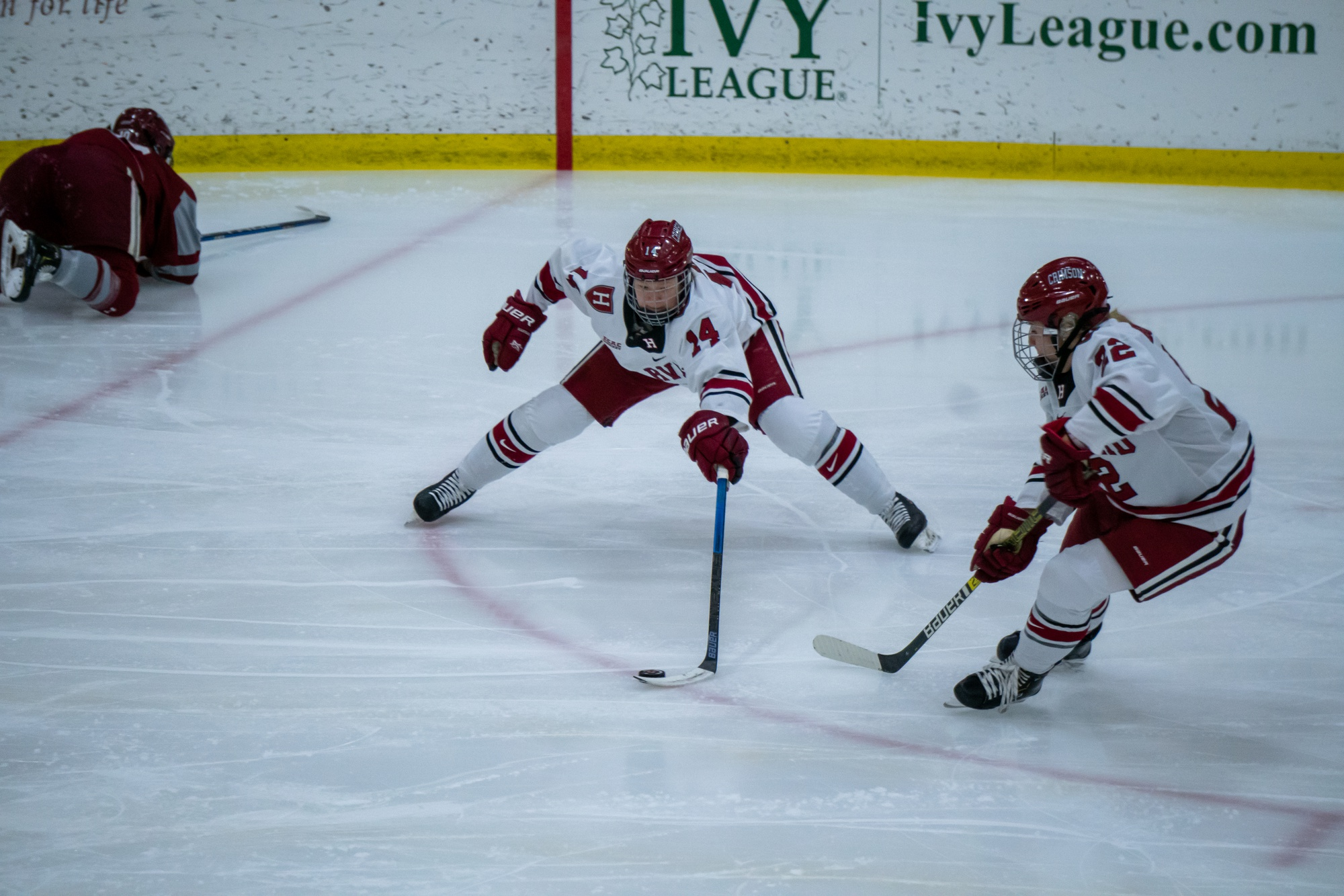 Sophomore forward Dominique Petrie returned to the lineup with two assists on Saturday night after an absence from injury. On Tuesday, Petrie found herself on the scoresheet again, but this time in the penalties section.