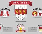 Mather Housing Market 2020