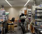 Coronavirus Research Interruptions