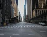 NYC COVID-19 13