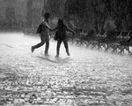 Arts Playlist: Rain Accompanying Image
