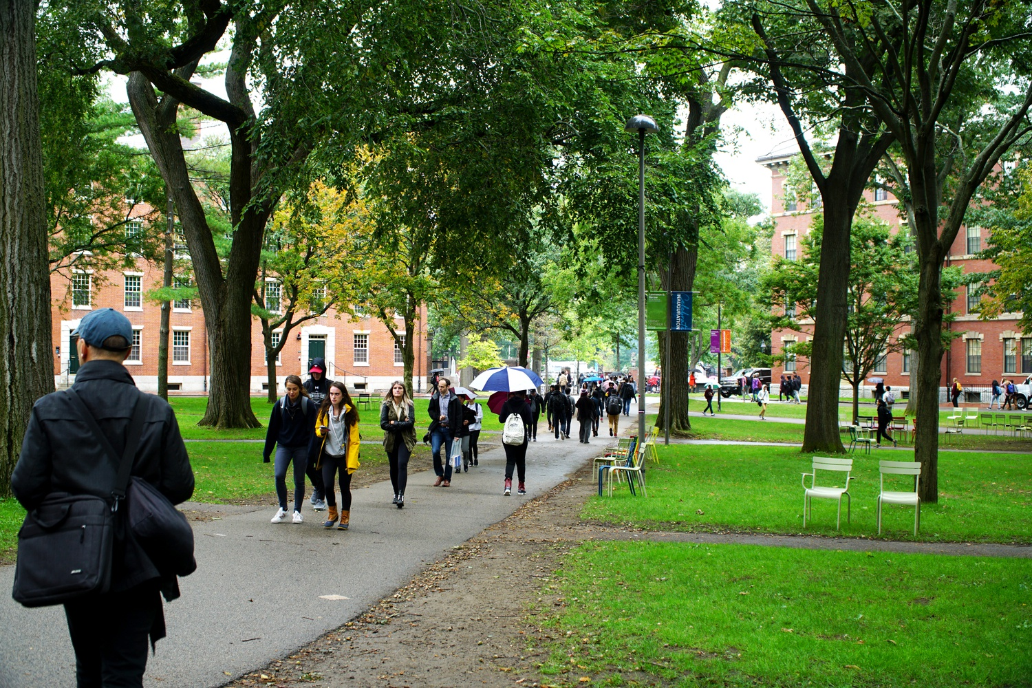Students walk through Harvard Yard.