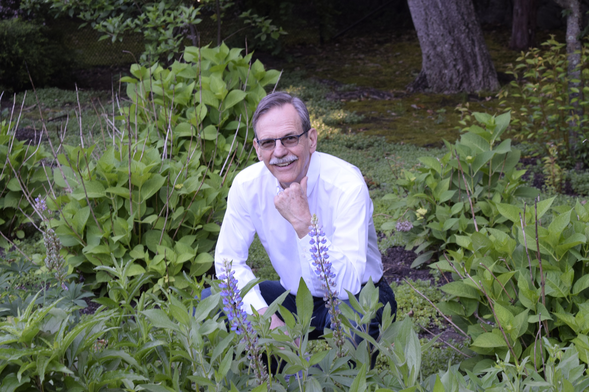 Timothy Springer, a professor at Harvard Medical School and founding investor in Moderna, pictured in his home garden.
