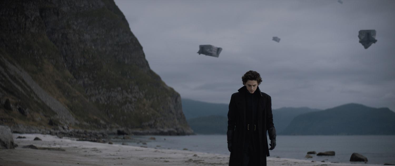 "Timothée Chalamet stars as Paul Atreides in ""Dune"" (2020), directed by Denis Villeneuve."