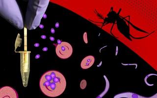 Wyss Malaria Test