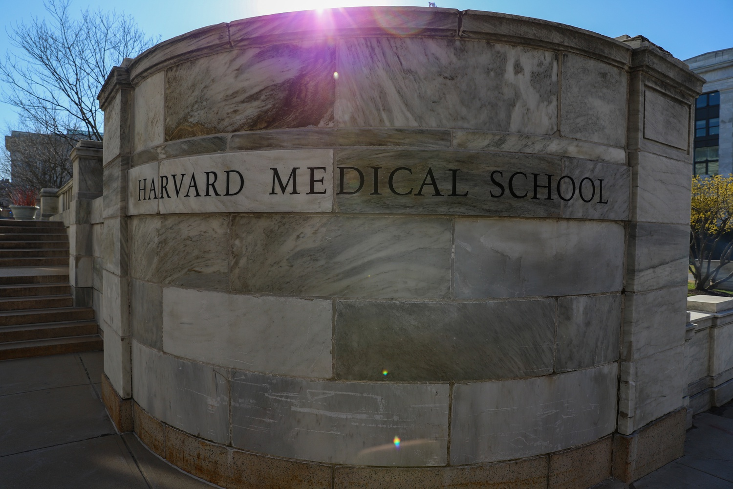 Harvard Medical School Dean George Q. Daley '82 said in an interview Friday that the school devoted nearly all its resources to fighting COVID-19 this spring.