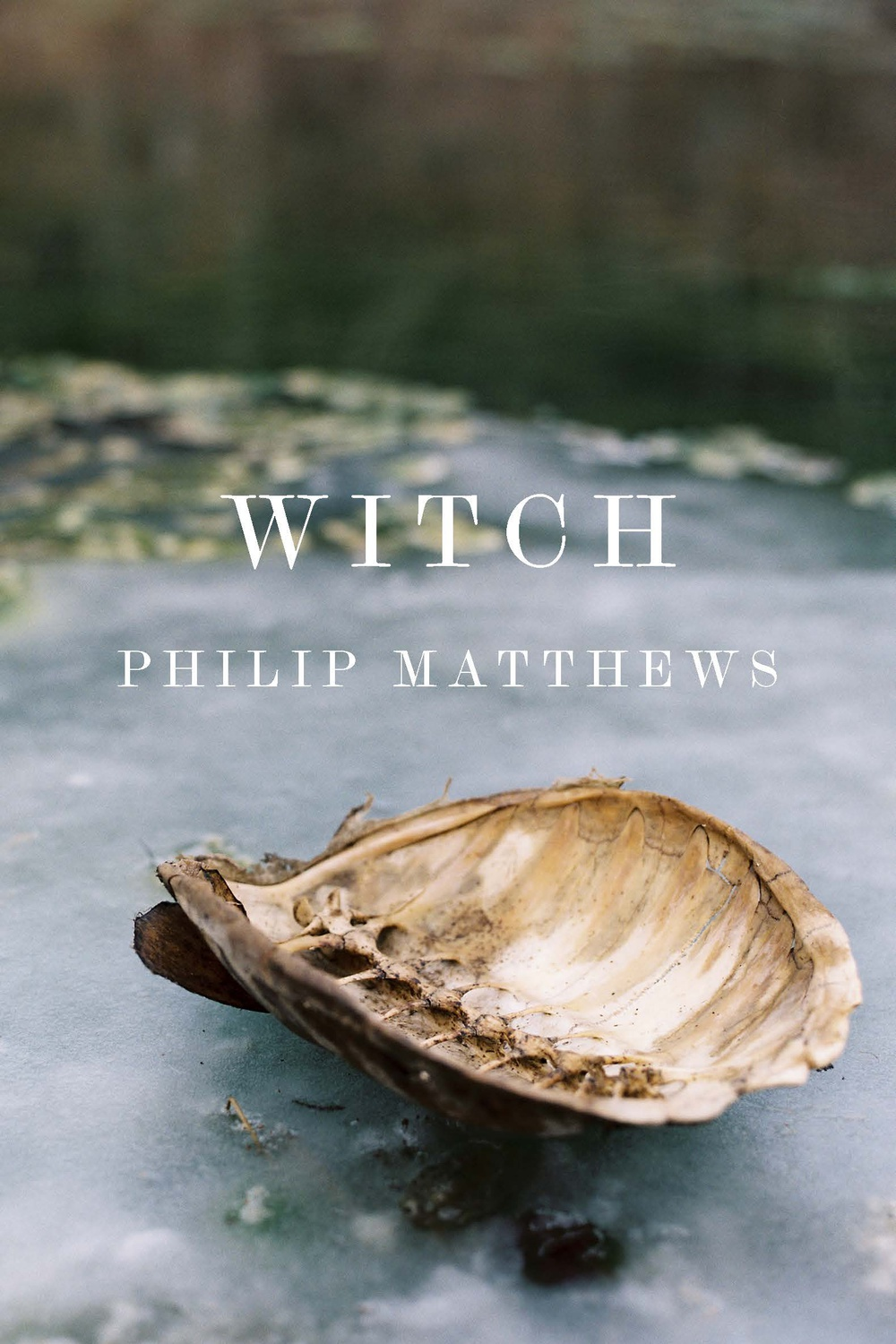 "Cover art of ""Witch."""