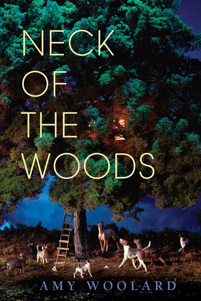 "Cover art of ""Neck of the Woods."""