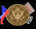 Biden SFFA Graphic