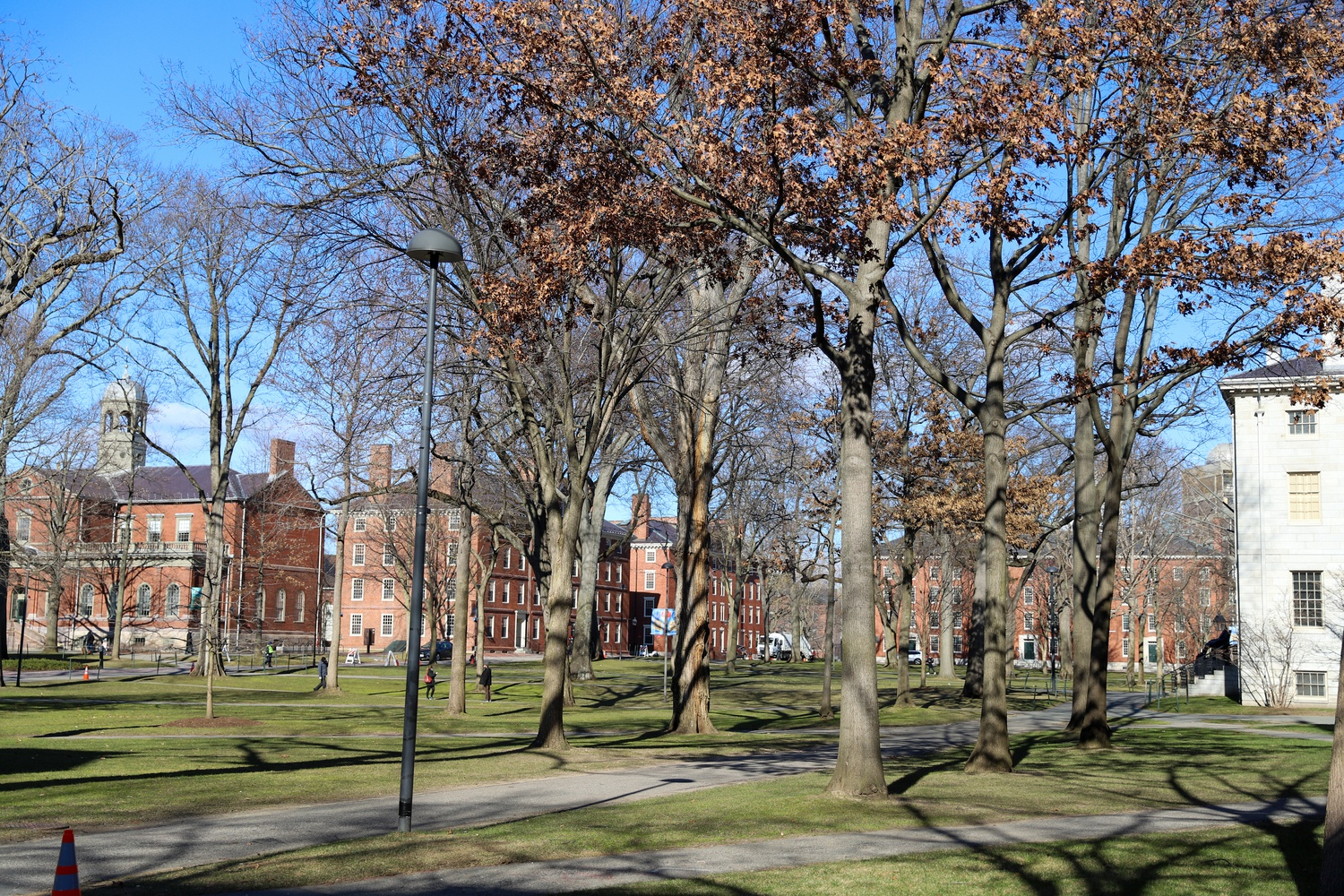 Harvard Yard sits mostly deserted Saturday as the coronavirus pandemic continues to rage.