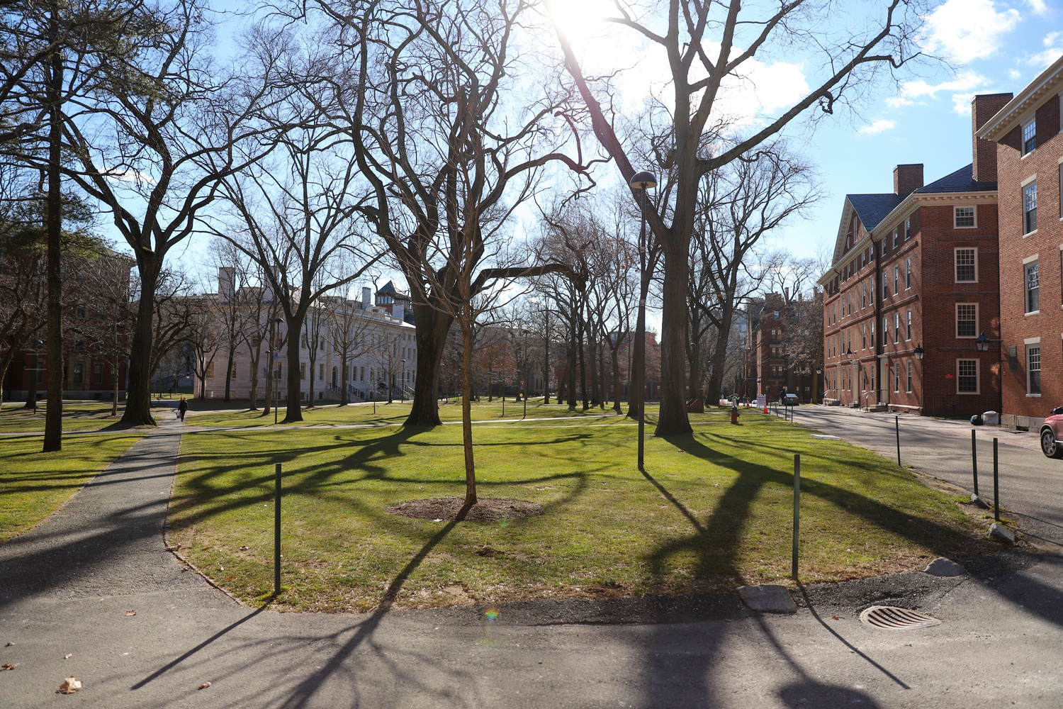 Harvard Yard sits largely empty early in the fully remote spring 2021 semester. A strong majority of surveyed faculty felt remote learning is not as valuable to students as in-person instruction.