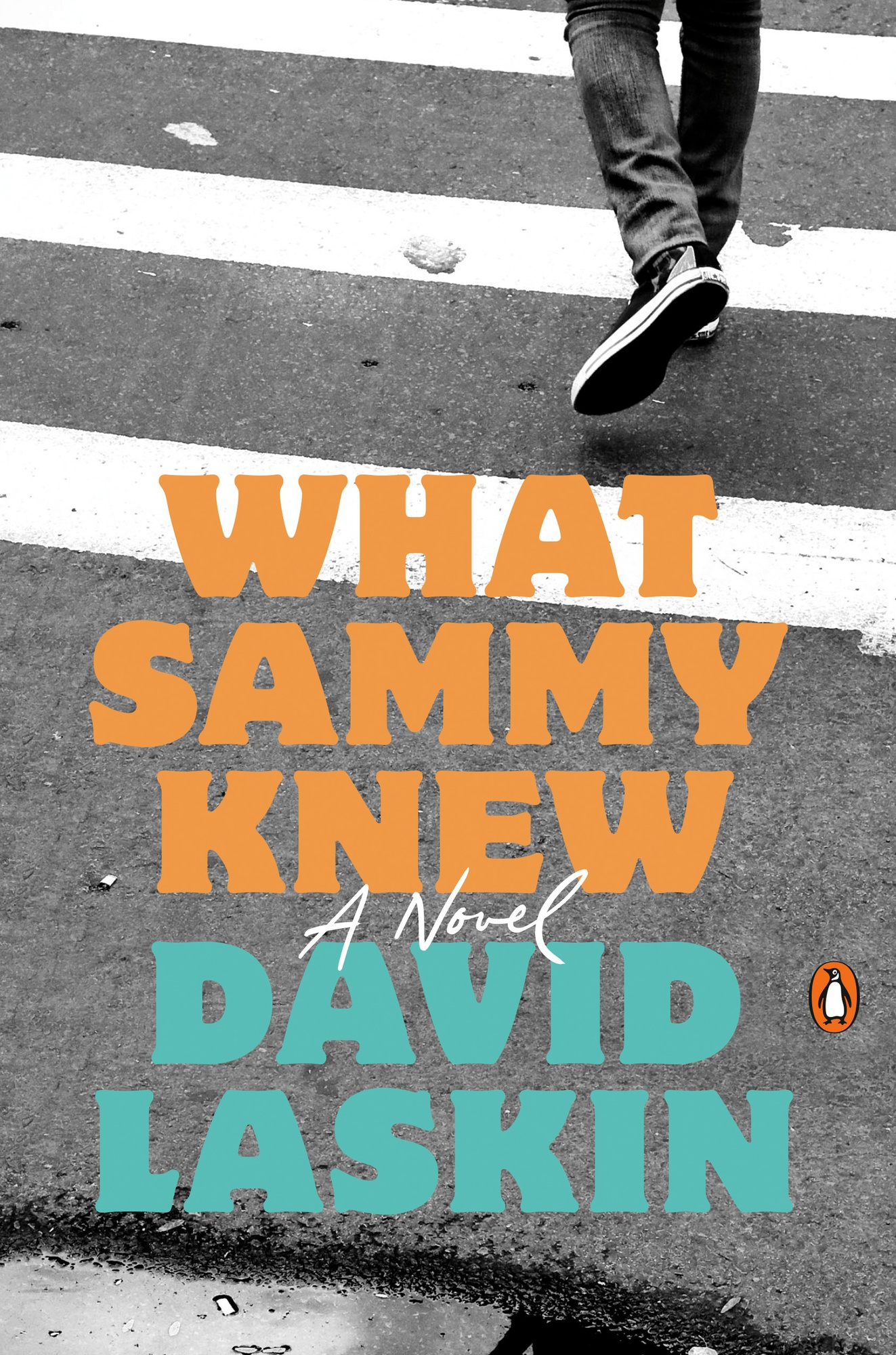 """Cover for the coming-of-age novel, """"What Sammy Knew,"""" by David Laskin."""