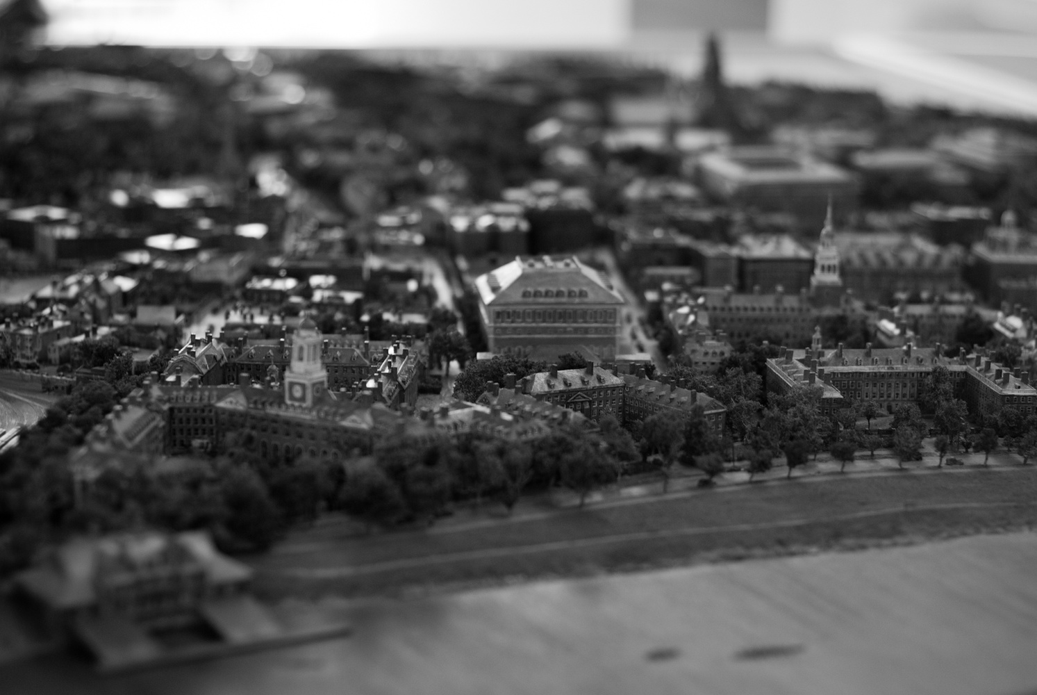 Another shot of the diorama of Harvard University campus in 1936 in the HMC lobby.