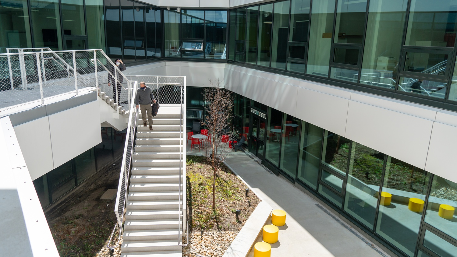 Similar to the sunken tree of Pusey Library, the SEC features a subterranean outdoor courtyard that opens up to surface level.