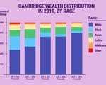 Cambridge Wealth Inequality Graph