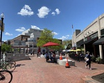 Harvard Square Reopening