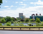 Allston and Charles River