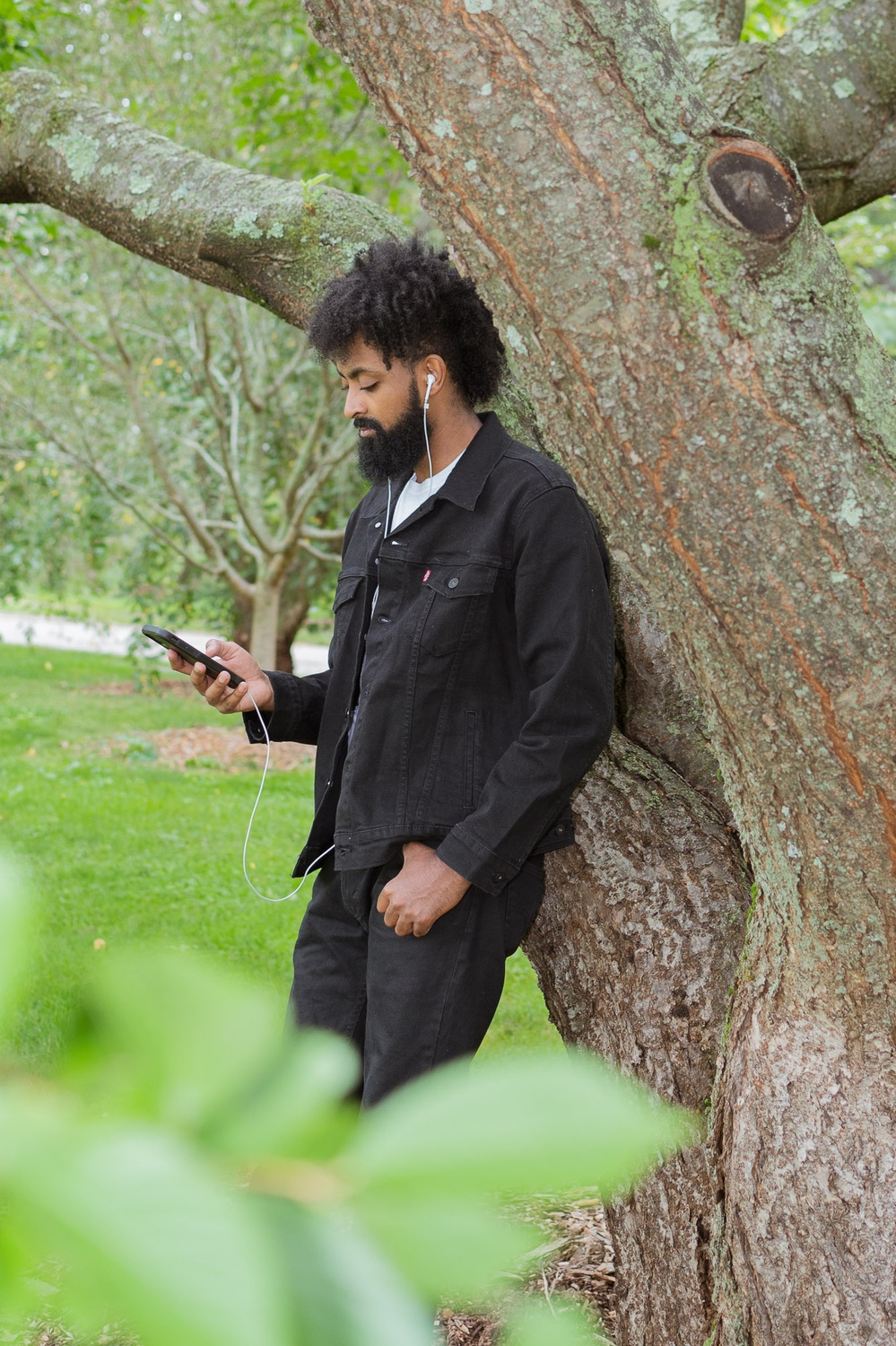 """A visitor uses their phone to plug into """"The Arboretum Experience."""""""
