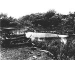 Muddy Pond Bulldozer