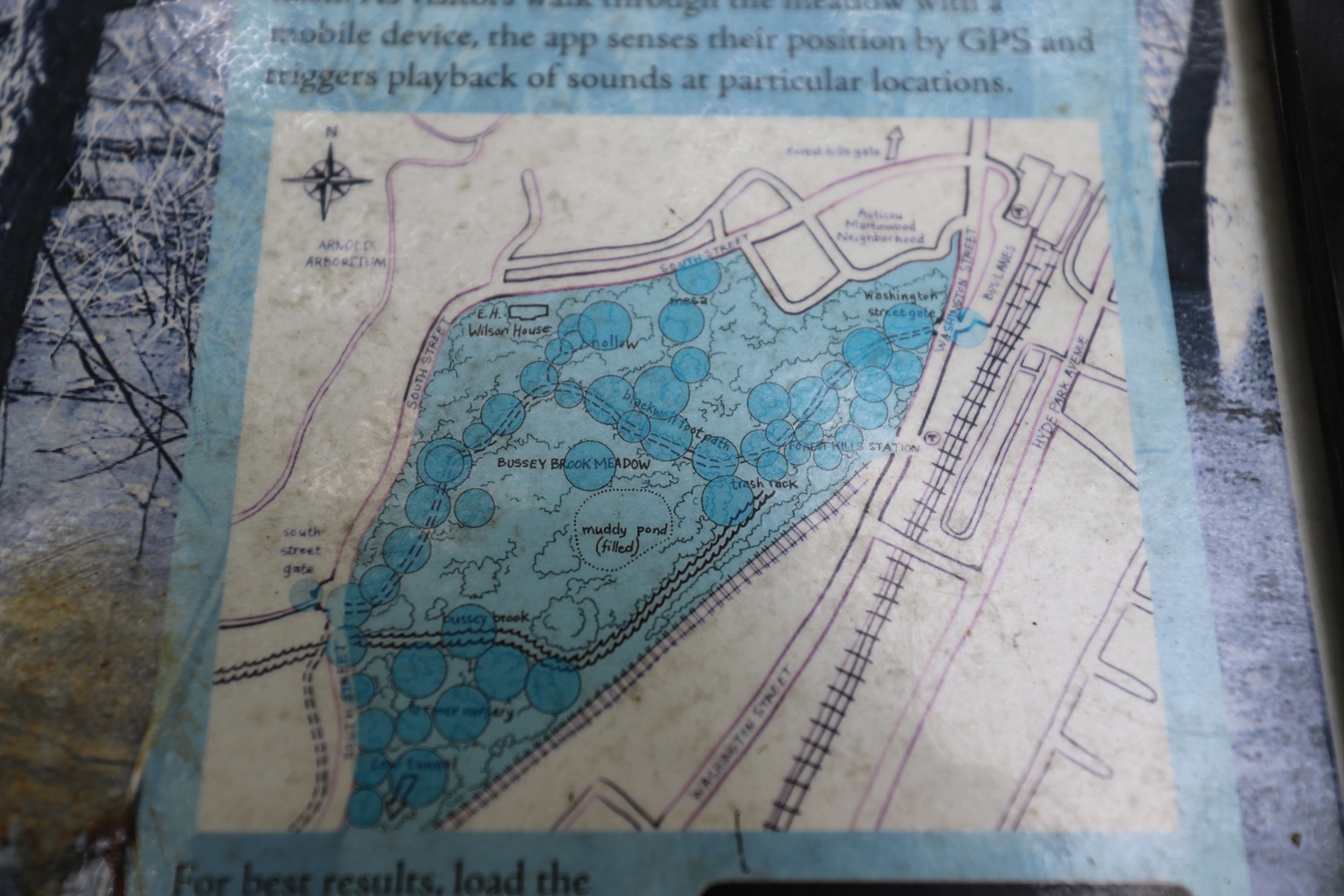 A map of the Arboretum located on the Blackwell Footpath references the now filled-in Muddy Pond.