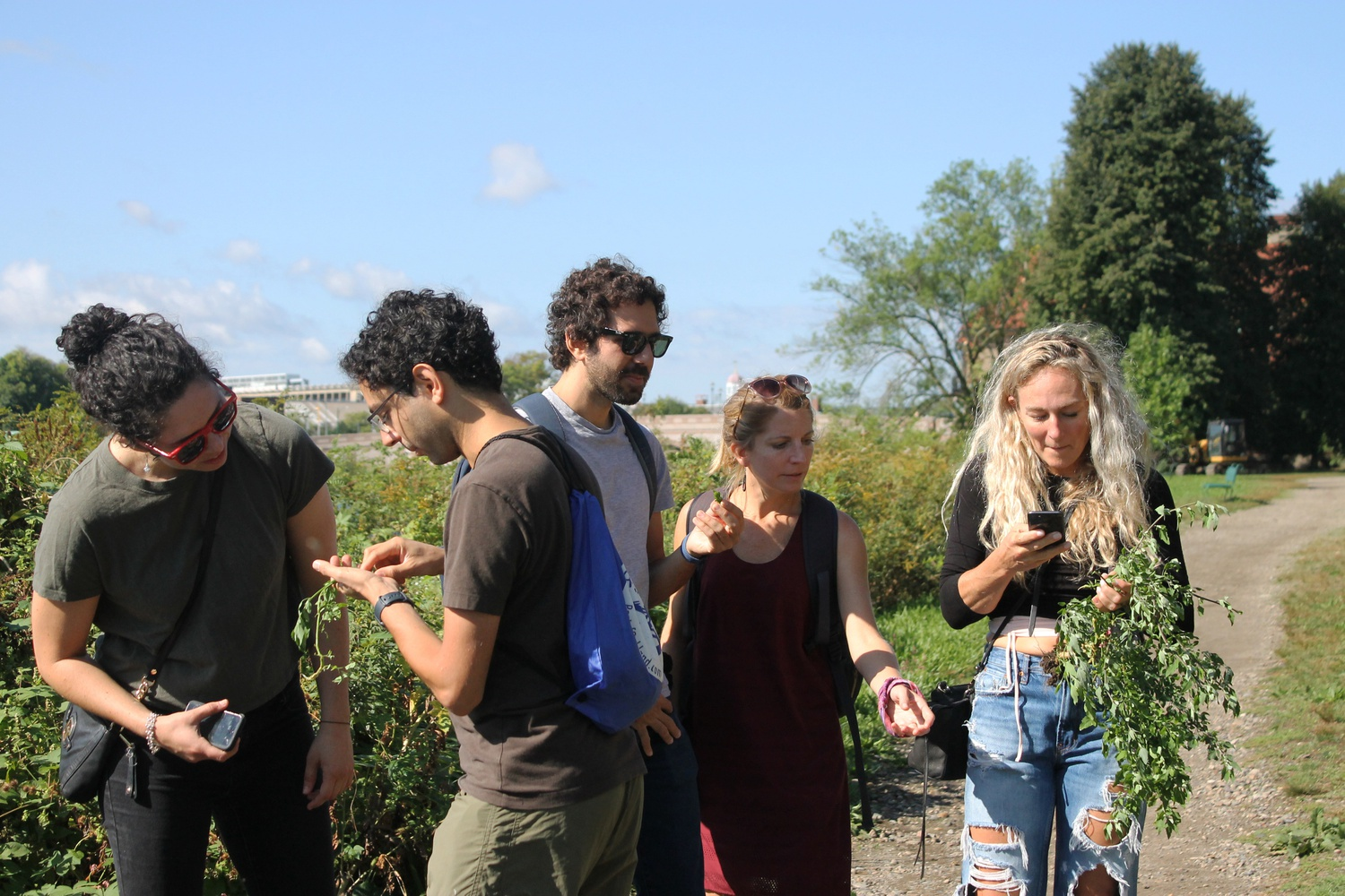 Participants on the plant foraging tour look at plants by the Charles River. The tour was free for participants and hosted by Fjällräven Cambridge.