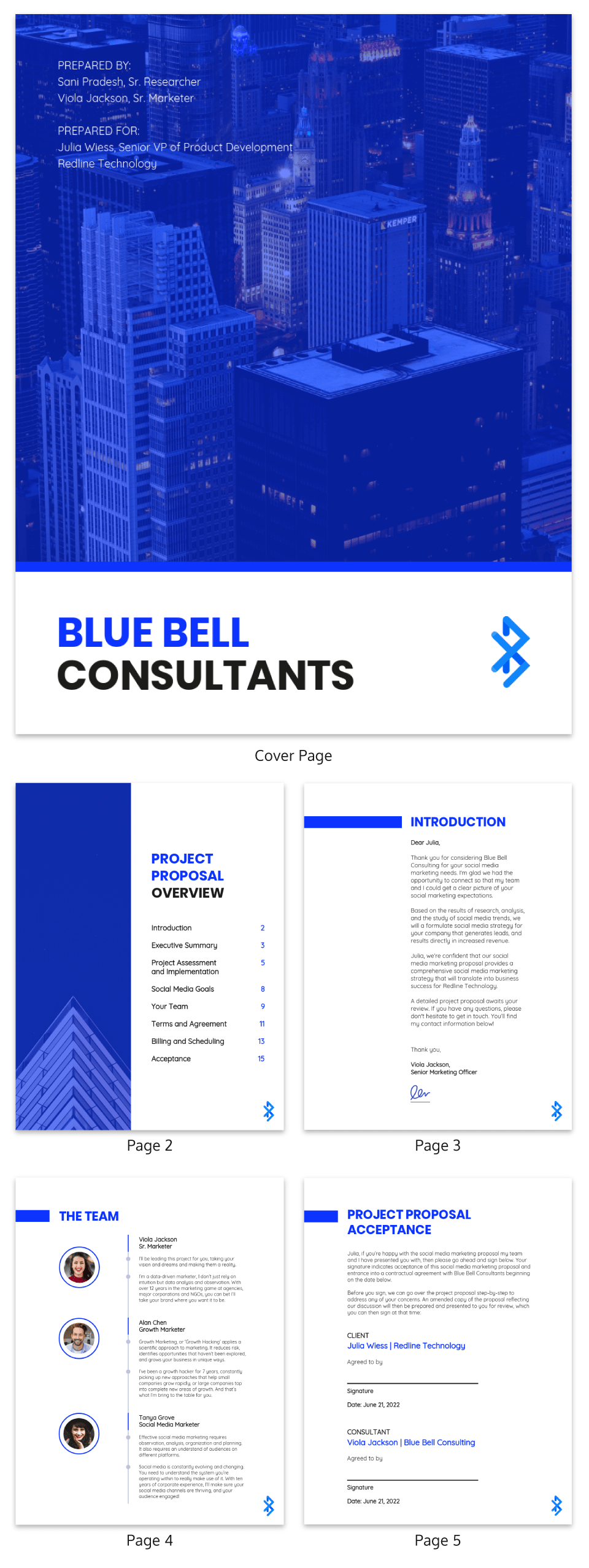 Blue Social Media Consulting Proposal Template