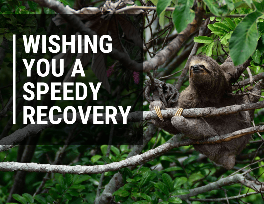 Speedy Recovery Get Well Card Template - Venngage