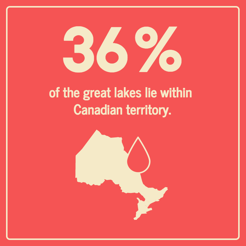 Geography Statistical Infographic Template