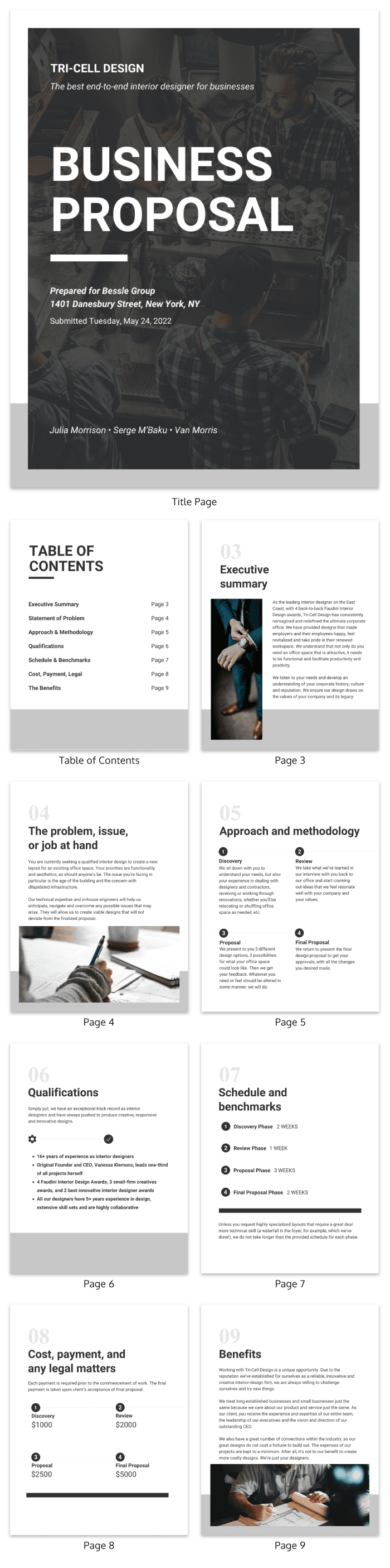 Standard Business Proposal Template Venngage