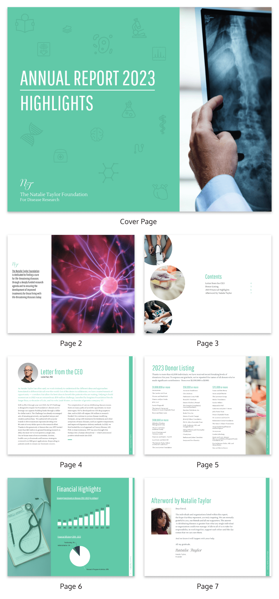 Medical Annual Report Template