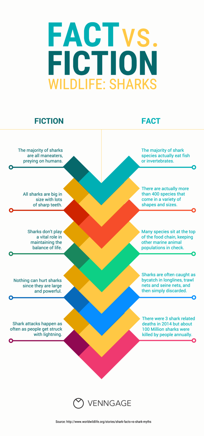 Sharks Fact vs. Fiction Infographic Template