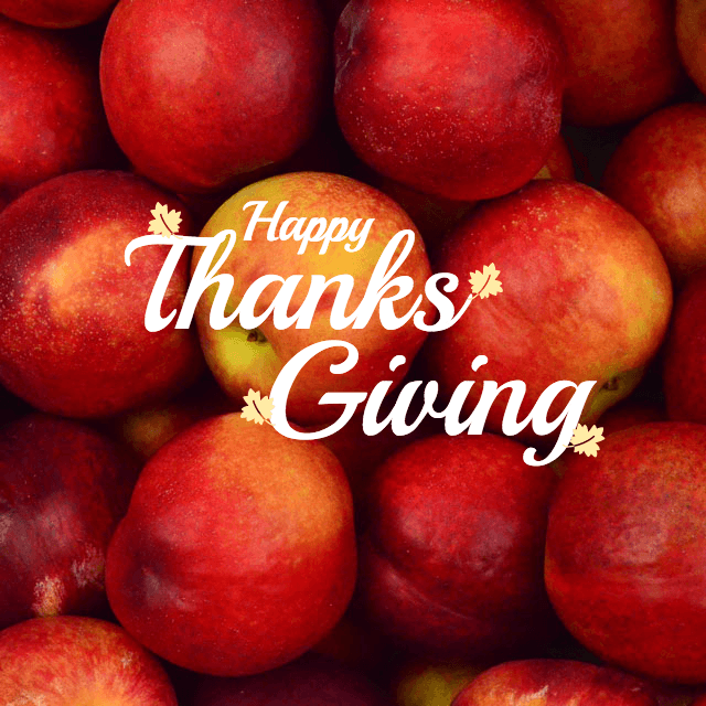 Thanksgiving Instagram Banner Template