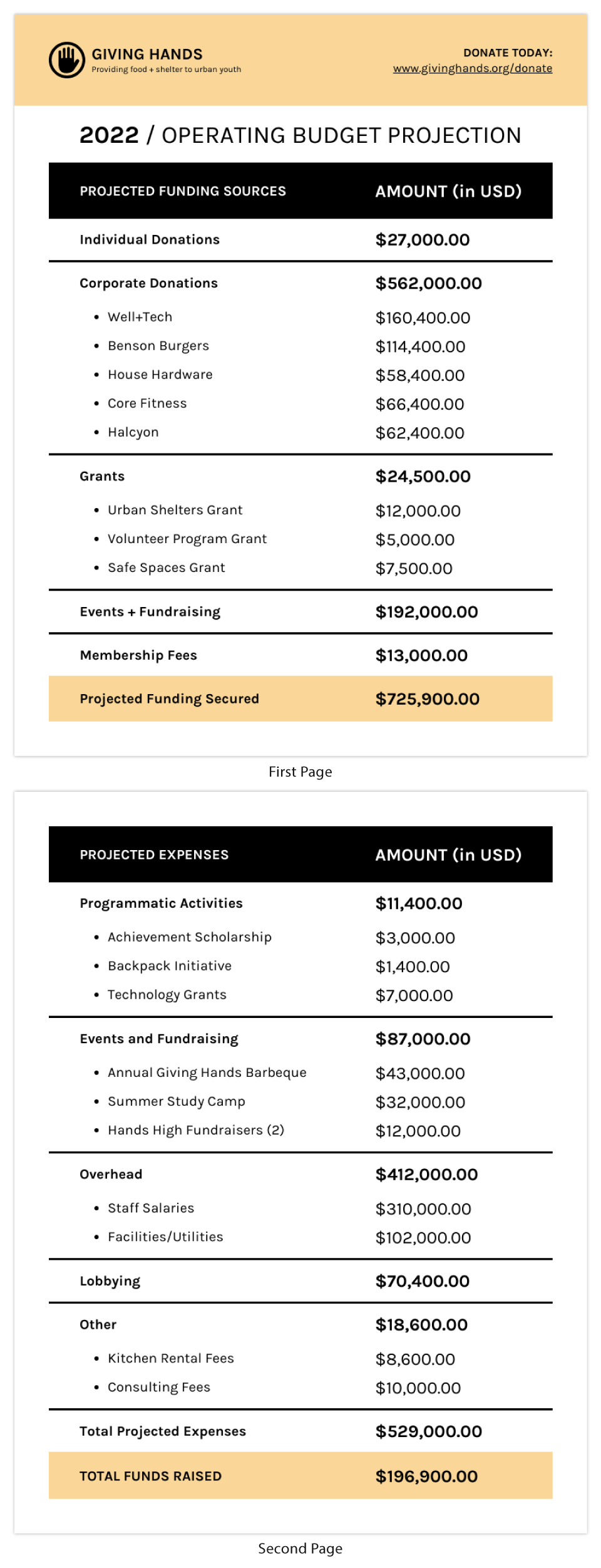 Simple Nonprofit Budget Annual Report Template