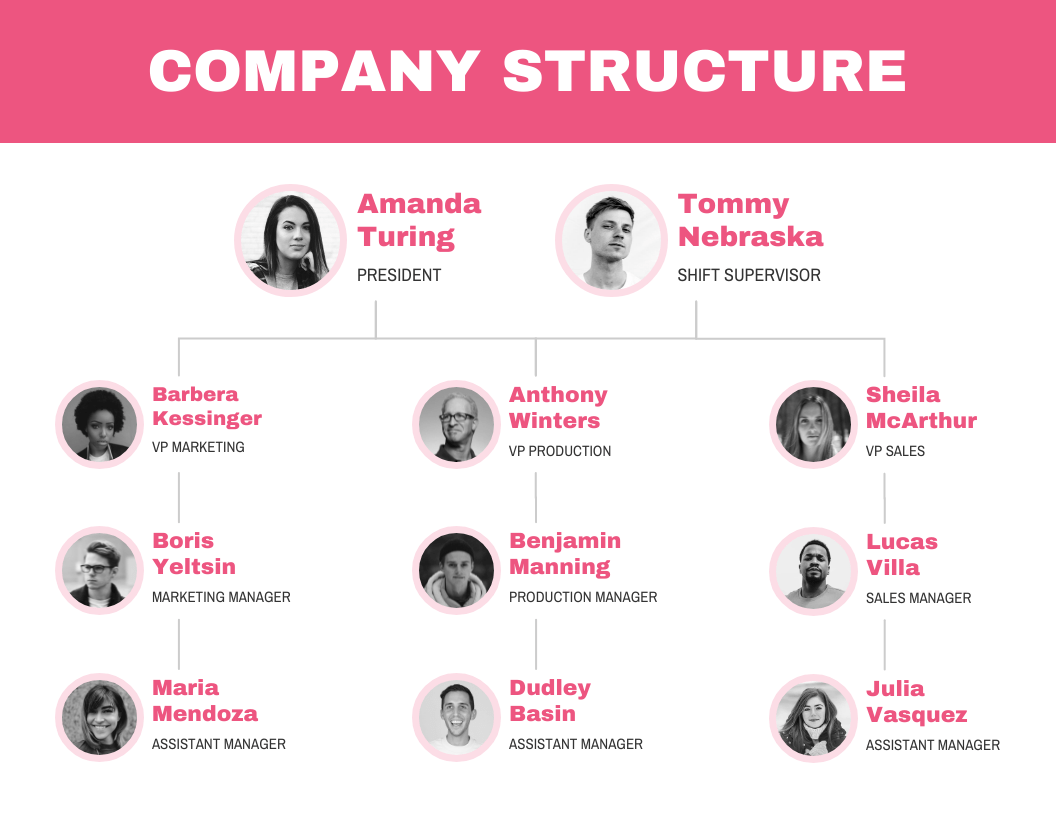 Company Structure Flow Chart Template