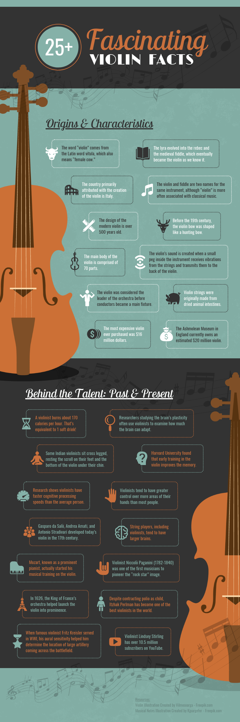 Violin Infographic Template