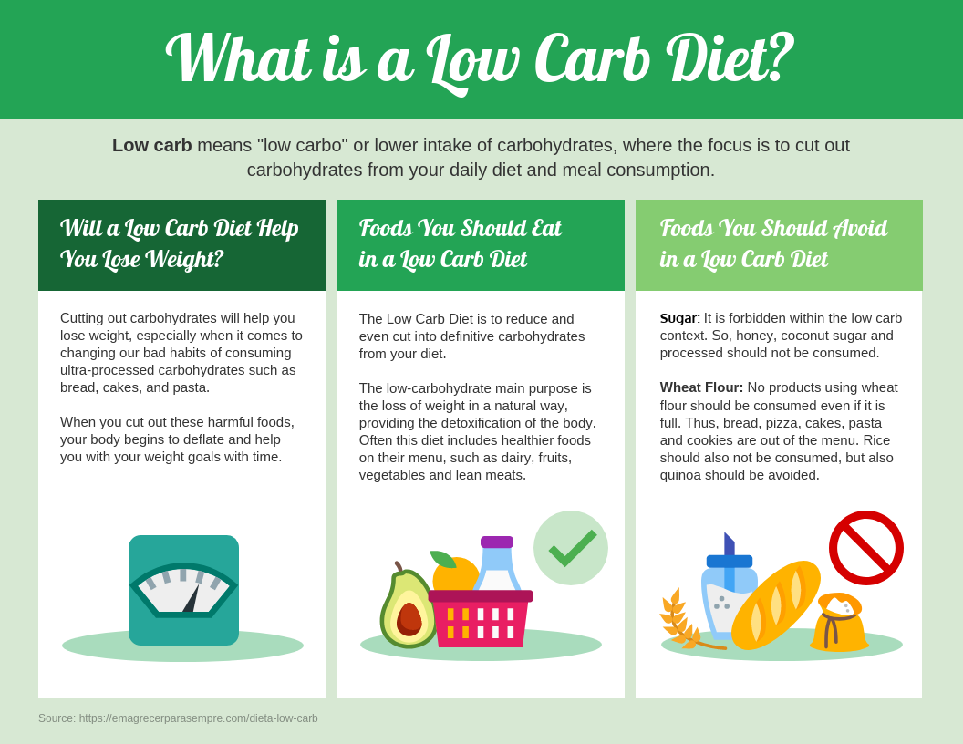 Low Carb Diet Facts Infographic Template
