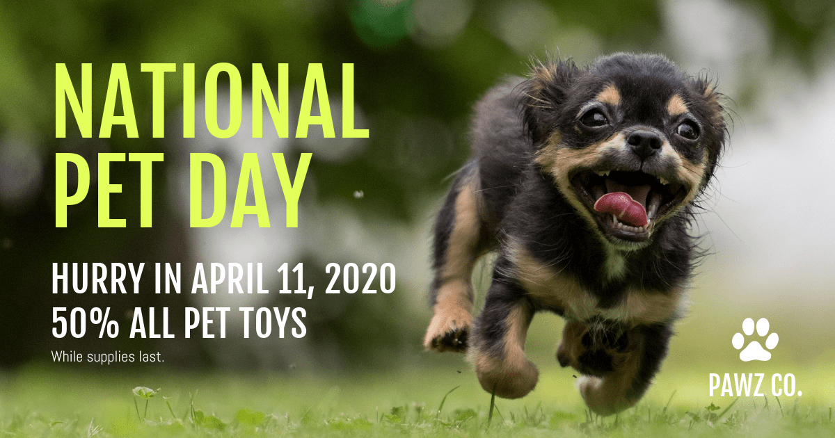 National Pet Day Promotional Facebook Post Template