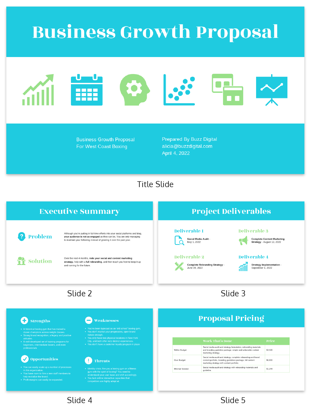 B2C Client Consulting Presentation Template