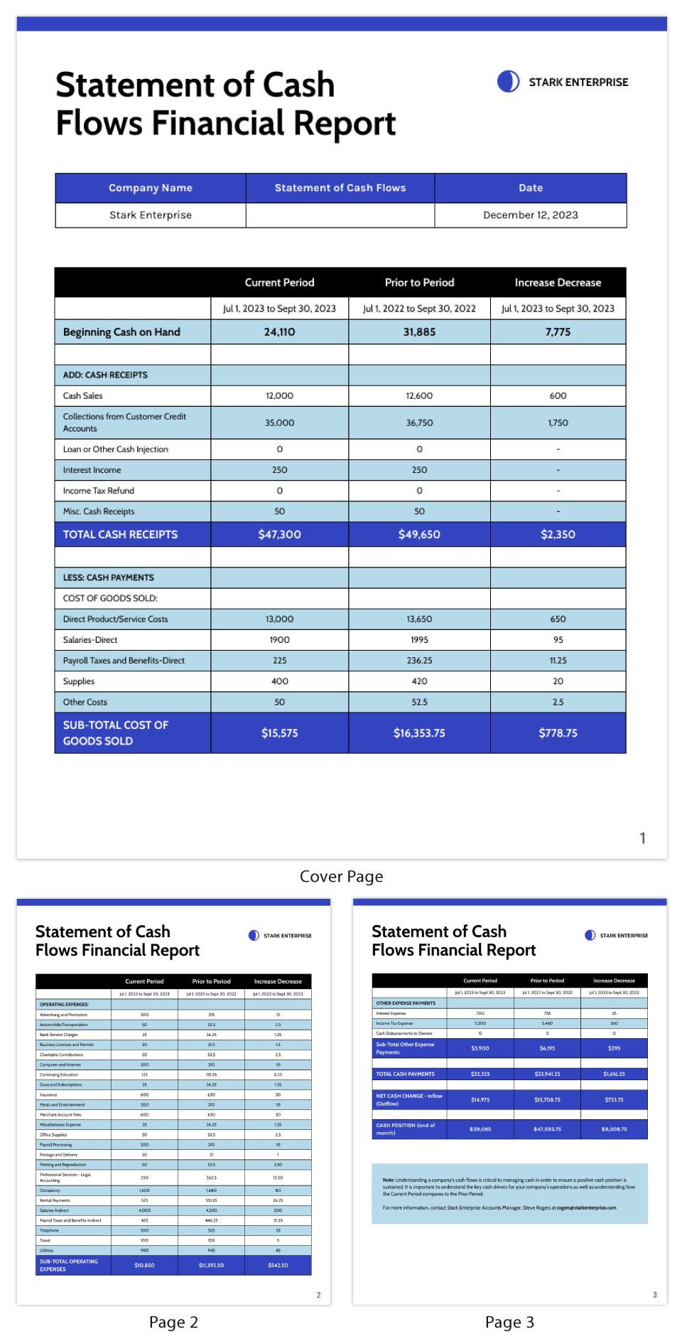 Statement of Cash Flows Financial Report Template