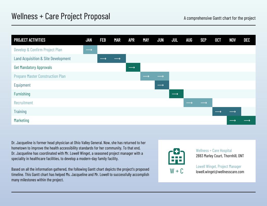 Hospital Admin Project Gantt Chart Template