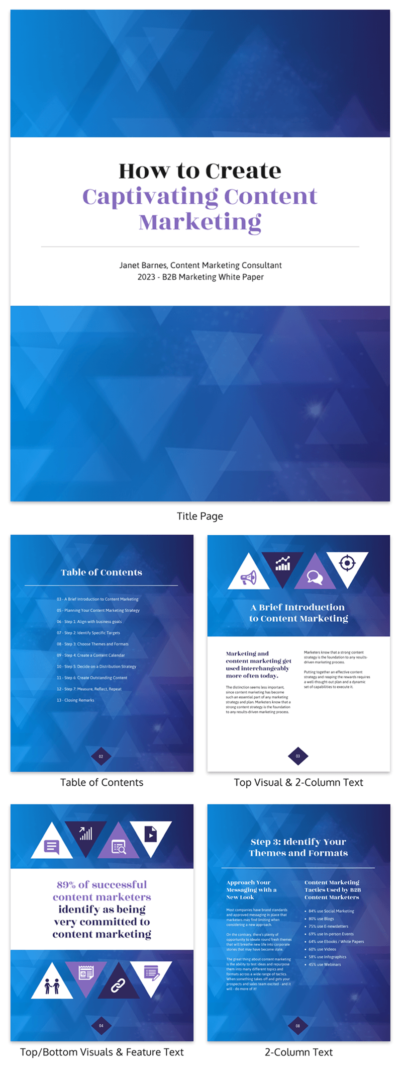 Gradient Content Marketing White Paper Template